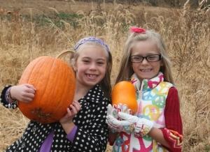 Harvest Festival brings much joy.