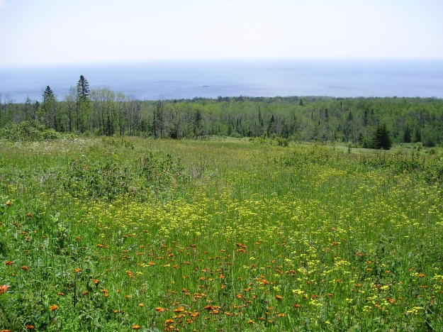 Lake Superior from the Superior Hiking Trail
